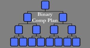 MLM Binary